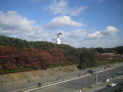 万博公園と言えば太陽の塔